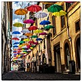 Ombrelli Zagarolo.jpg
