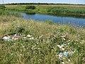 On shore - panoramio (3).jpg