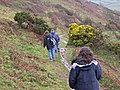 On the Coast Path in January - geograph.org.uk - 314541.jpg
