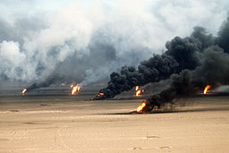proof gulf war illness does exist operation desert storm 22