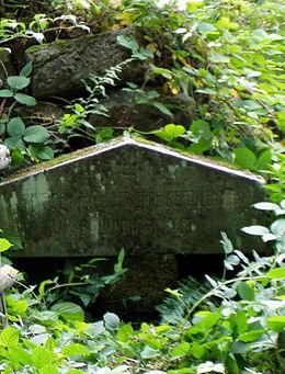 Cmentarz wojenny nr 1 w Ożennej - prawie całkowicie zniszczony.