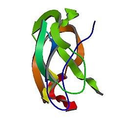 Amyloid beta (A4) precursor protein