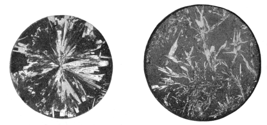 PSM V61 D158 Platino cyanide of magnesia and bichromate of potash crystals.png