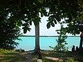 Paisaje en la Laguna Milagros, Q. Roo. - panoramio.jpg