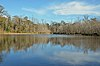 A picture of a lake with dormant trees in the back