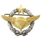 Para-armée-air-qualif.jpg