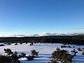 Parc naturel régional du Livradois-Forez.jpg