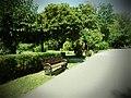 Parcul Herastrau (9463440845).jpg