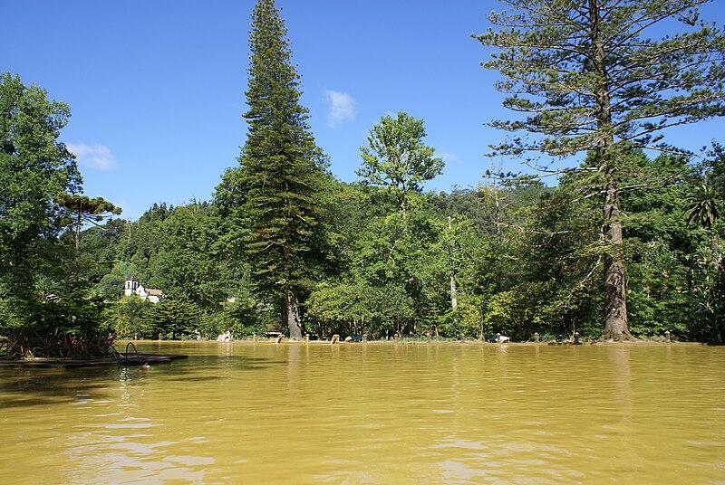 Ficheiro:Parque Terra Nostra, Piscina de água férrea, Furnas, ilha de São Miguel, Açores.JPG