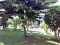 Parque de La Colinita Guayabal - panoramio (1).jpg