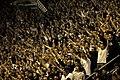 Partizan fans Pionir.jpg