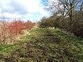 Path to Edwins Hall - geograph.org.uk - 129906.jpg