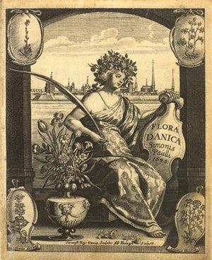 1648 in Denmark - From Simon Paulli's Flora Danica
