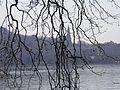 Paysage (Annecy) (3).jpg