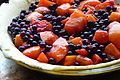 Peach-blueberry pie, November 2009.jpg
