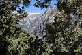 Peaks above Samaria Gorge from Xiloskalo, 076237.jpg