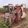 Peanut harvester.JPG
