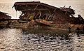 Pearl Harbor 71st Anniversary 121206-N-WF272-083.jpg