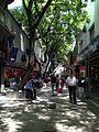 Peatonal en Córdoba.JPG