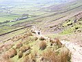 Pendle Hill - geograph.org.uk - 1186037.jpg