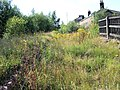 Penistone - Railway Station - geograph.org.uk - 513130.jpg