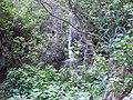 Pequeña cascada tras las hojas - panoramio.jpg