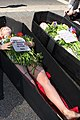 Peta Armani Fur is Dead (7984596901).jpg