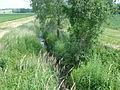Petit ruisseau nommé Loire qui nourrit le lavoir de Roche.jpg