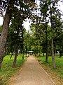 Piątek park.JPG