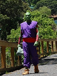 Piccolo Cosplay dragonball glasses.jpg