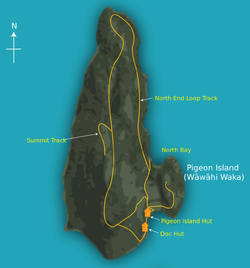 Pigeon Island (New Zealand) with details - 01.png