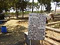 PikiWiki Israel 13643 Grove in memory of Julius and Ethel Rosenberg in K.jpg
