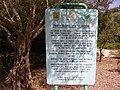 PikiWiki Israel 8075 memorial plate to alexander zeid.jpg