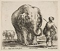 Plate 16- an elephant in center, his mahout standing to the right wearing an Oriental costume, another elephant to left in background, from 'Diversi capricci' MET DP817415.jpg
