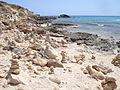 Playa d´Es Copinar (Zona de Migjorn) (3).JPG