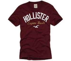 Hollister Co. - A Hollister tee shirt.