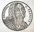 Plinius den Ældre - 1635.JPG