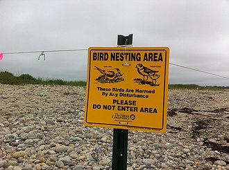 Quicksand Pond - Piping plover and least tern nesting area sign at Quicksand Pond