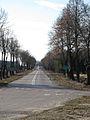 Podlaskie - Turośń Kościelna - DW682 Turośń Dolna 20120324 01.JPG