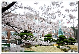 Pohang Girls' Electronic High School(2015).jpg