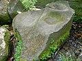 Polissoir de la rivière du Petit Carbet 02.jpg