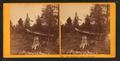 Portage, Lake Umbagog, from Robert N. Dennis collection of stereoscopic views.png