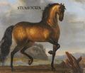 Porträtt från cirka 1650 på brun apelkastad häst - Skoklosters slott - 95246.tif