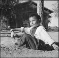Poston, Arizona. Albert Yava Jr. seems to be enjoying himself under a tree near his new home in Bl . . . - NARA - 539888.tif