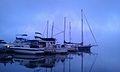 Poughkeepsie Yacht Club foggy day.jpg