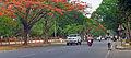 Princess Road Mysore.jpg