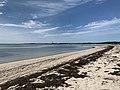 Provincetown Harbor Coastline.jpg