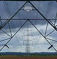 Pylons near Faxfleet - geograph.org.uk - 806421.jpg