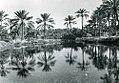 Qatif - Les Snyder 1939.jpg
