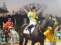 Race 6 of Tokyo city keiba at oi racecourse (46487315521).jpg